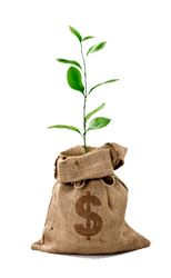 picture of bag of money sprouting